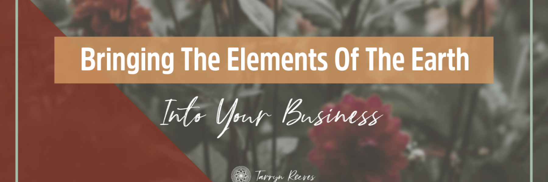 Bringing The Elements Of The Earth Into Your Business
