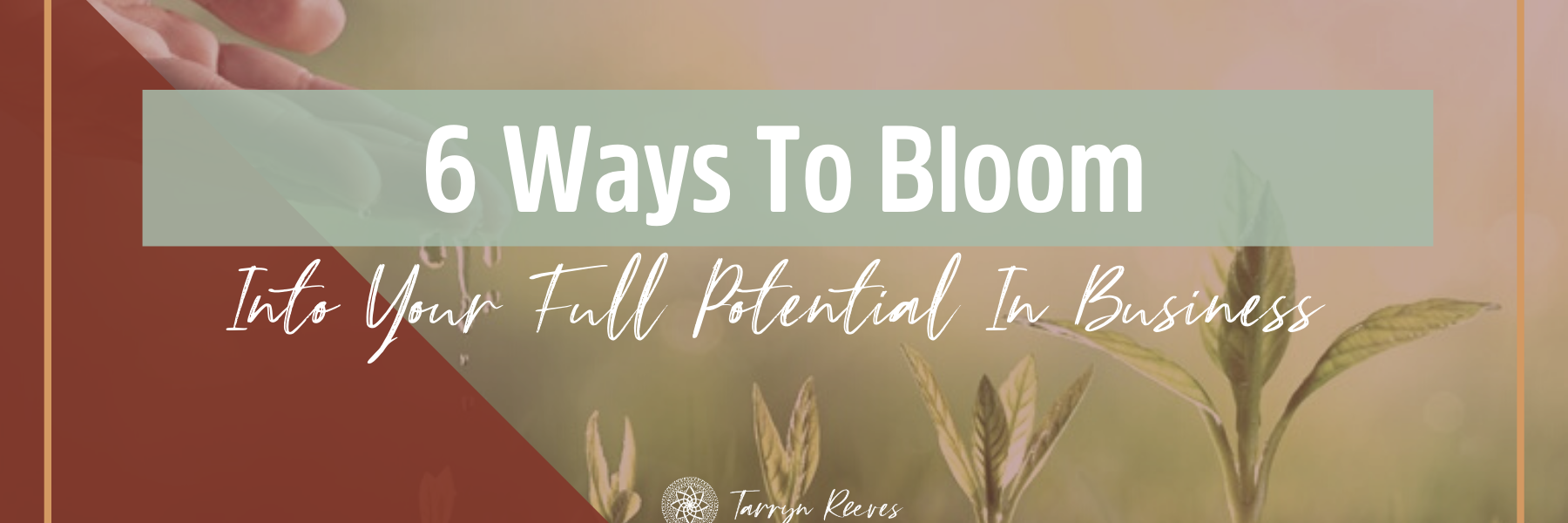 6 Ways To Bloom Into Your Full Potential In Business