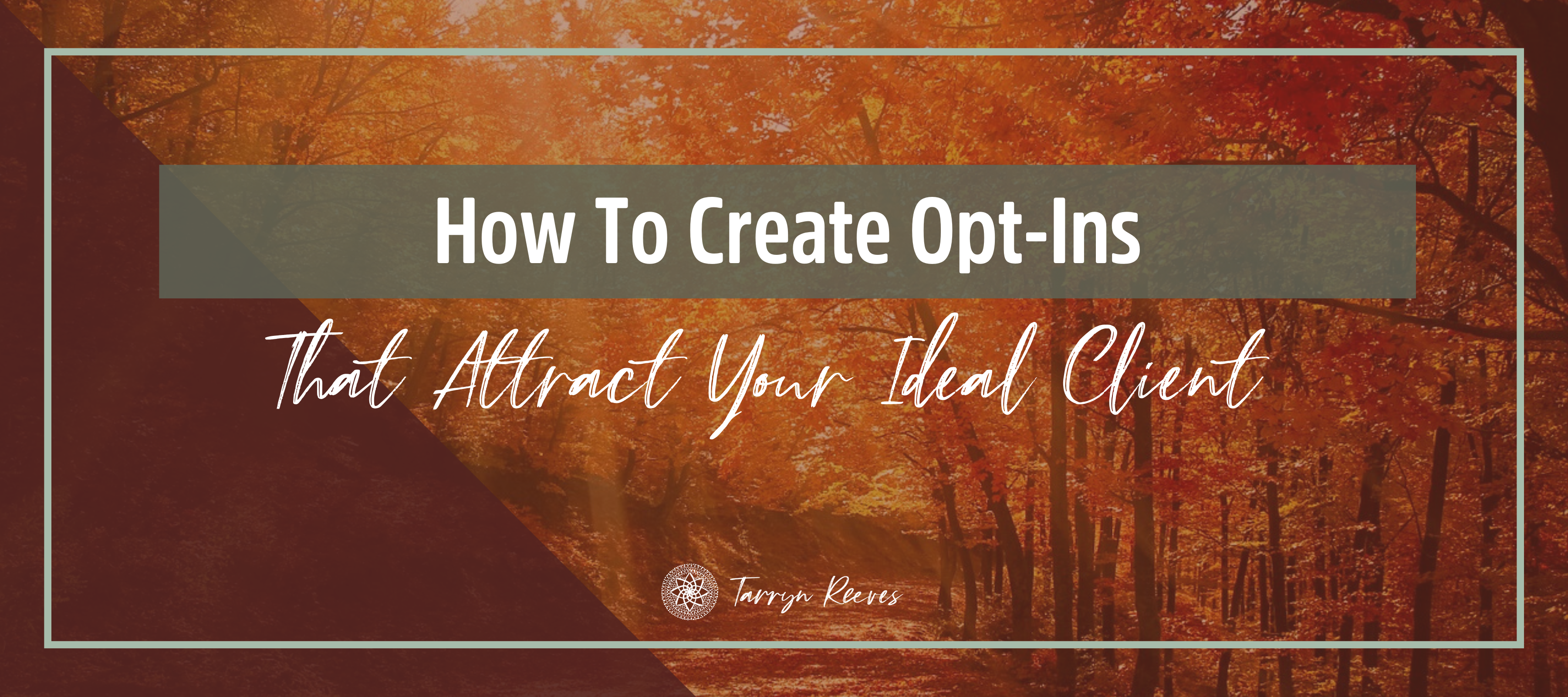How To Create Opt-Ins That Attract Your Ideal Client